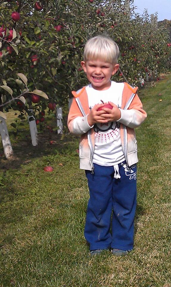 Child holding an apple after picking his own apples at Grim's Greenhouse, family orchard Breinigsville pa, family orchard allentown pa, family orchard bethlehem pa, corn maze Breinigsville pa, corn maze allentown pa, corn maze bethlehem pa, pumpkin picking Breinigsville pa, pumpkin picking allentown pa, pumpkin picking bethlehem pa, apple picking Breinigsville pa, apple picking allentown pa, apple picking bethlehem pa, hay rides Breinigsville pa, hay rides allentown pa, hay rides bethlehem pa, apple orchard Breinigsville pa, apple orchard allentown pa, apple orchard bethlehem pa