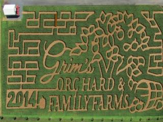 2014-Corn-Maze