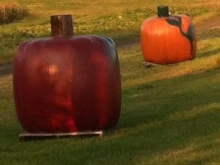 Oversized pumpkin decor in a field at Grim's Greenhouse