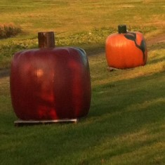 Oversized pumpkin decor in a field at Grim's Greenhouse