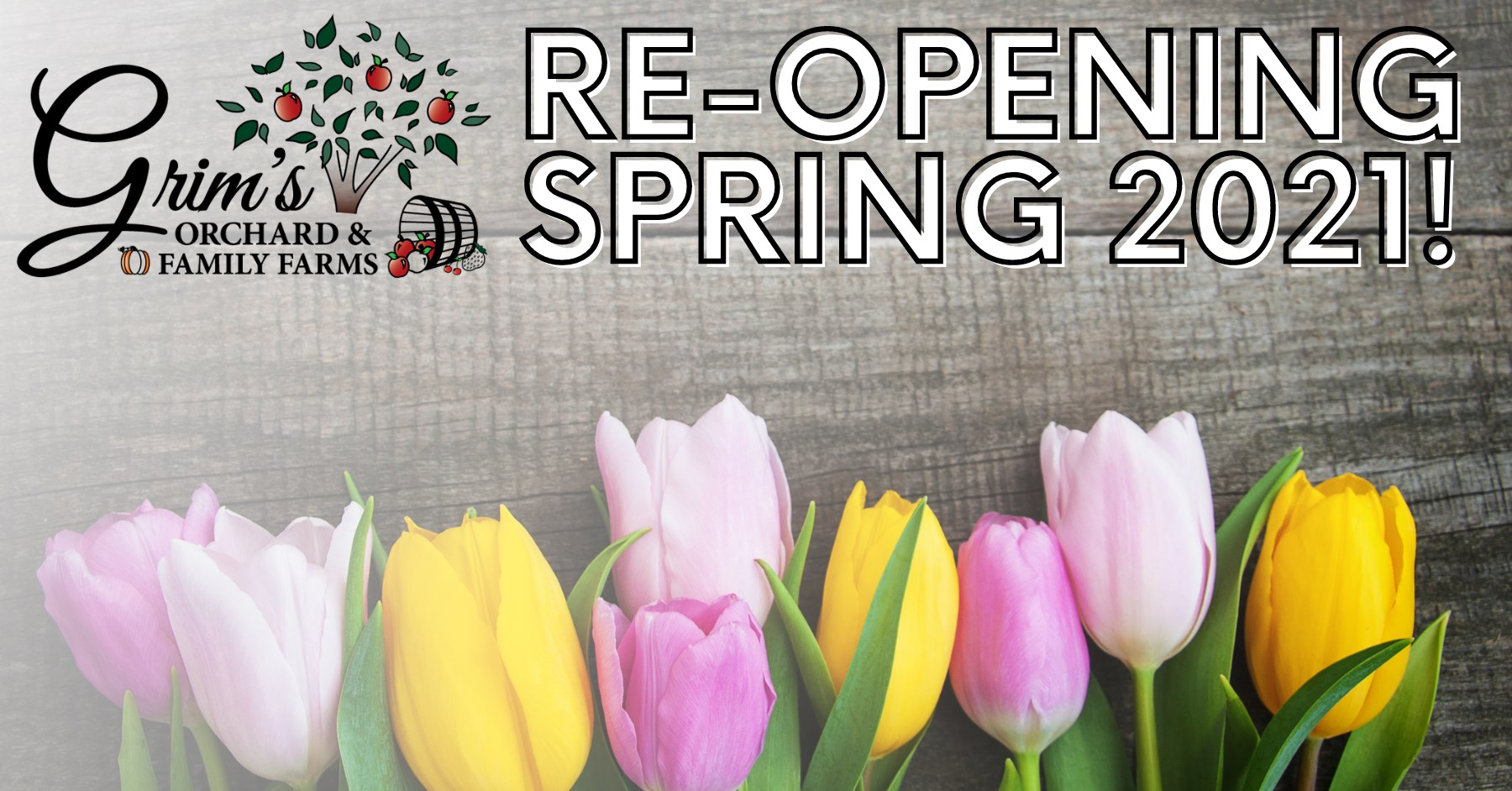 grims orchard and family farms re-opening spring 2021. join us for tulip picking